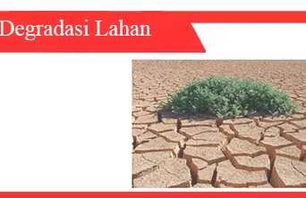 Degradasi-tanah-sumber-dampak-perbaikan-bioremediasi