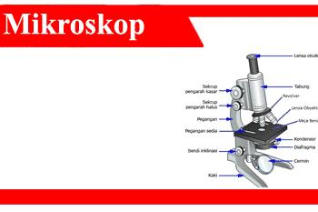 Mikroskop-adalah-sejarah-fungsi-jenis-bagian-kelebihan